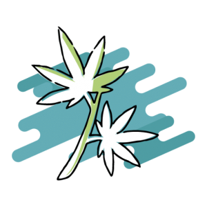 Corso Cannabis Medica I livello