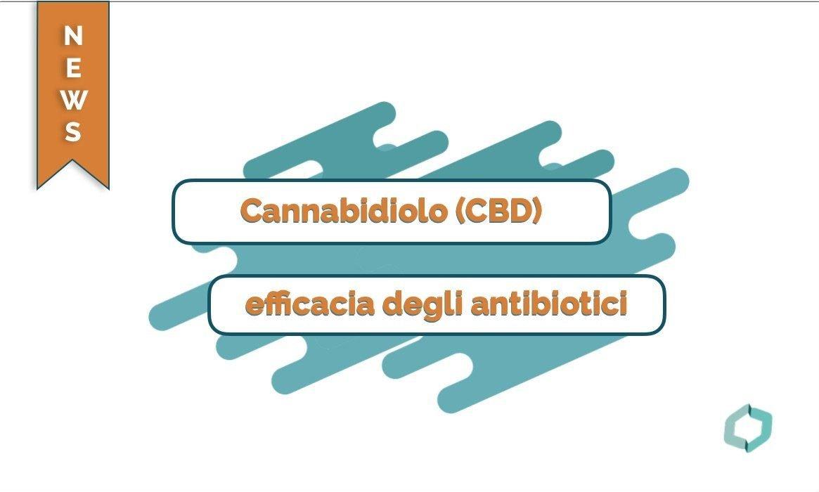 Il CBD sembra migliorare l'efficacia degli antibiotici