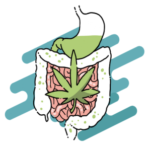 Cannabis e Alimentazione - Corso E-learning - Cannabiscienza