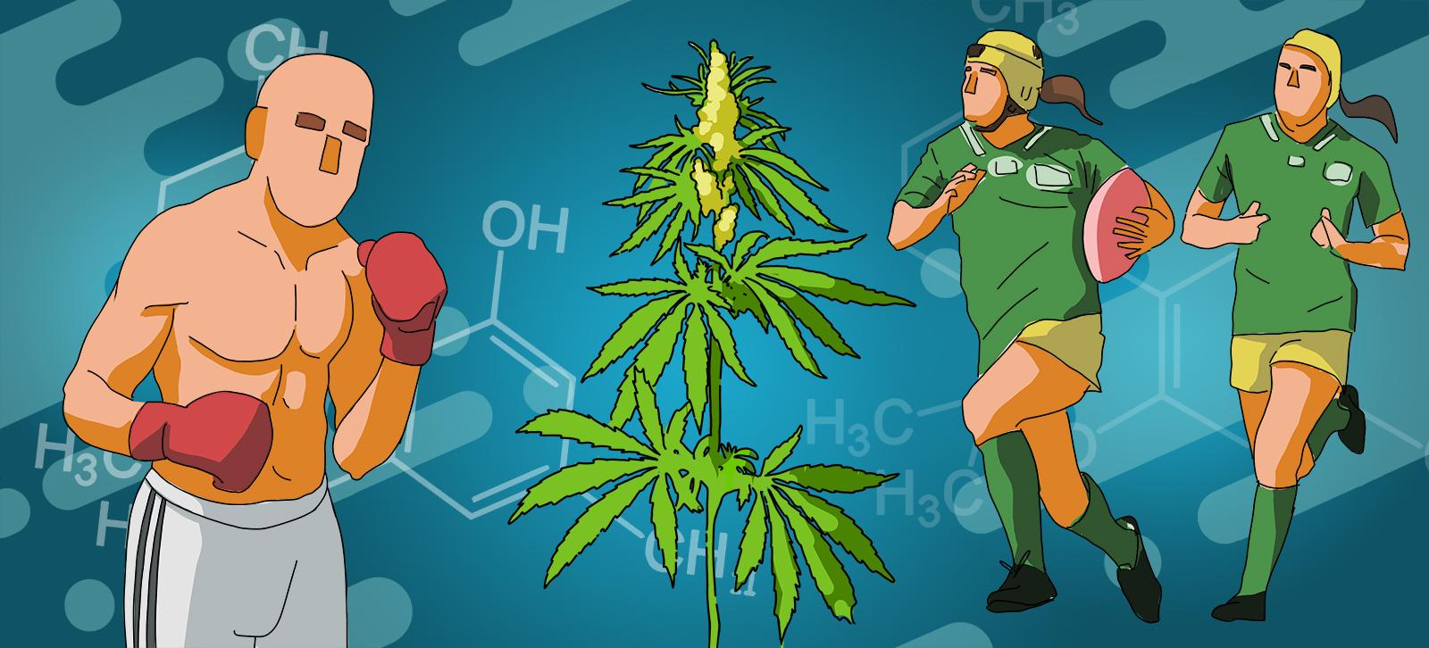 CBD e sport - cosa ci dice la scienza - Cannabiscienza