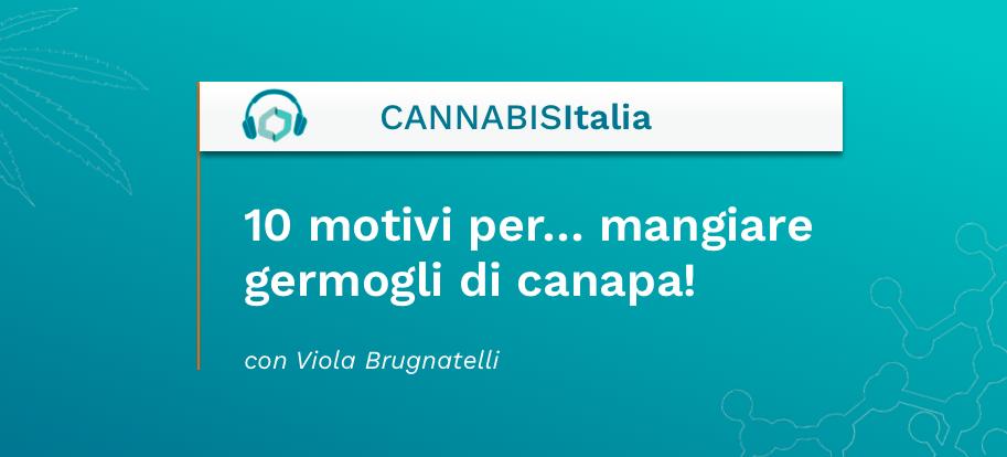 10 motivi per mangiare i germogli di canapa - Cannabis Italia - Cannabiscienza - Sito