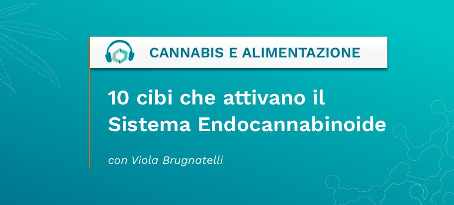 10 cibi che attiva il Sistema Endocannabinoide - Cannabis Italia - Cannabiscienza - Sito