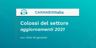 Colossi del settore aggiornamenti 2021 - Cannabis Italia - Cannabiscienza - Sito