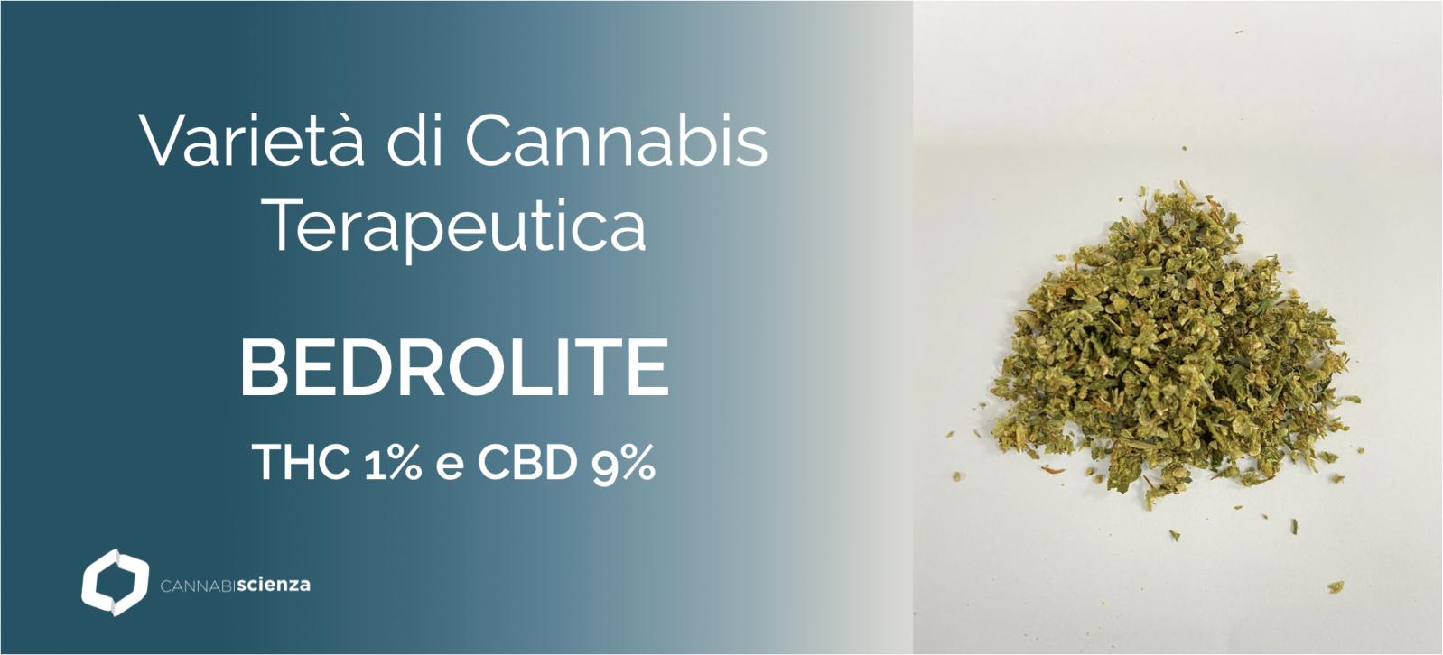 Bedrolite - Cannabis terapeutica - Cannabiscienza