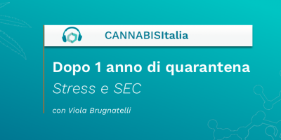 Dopo 1 anno di quarantena Stres e SEC - Cannabis Italia - Cannabiscienza - Sito