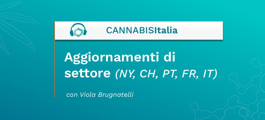 Aggiornamenti di settore (NY, CH, PT, FR, IT) - Cannabis Italia - Cannabiscienza - Sito