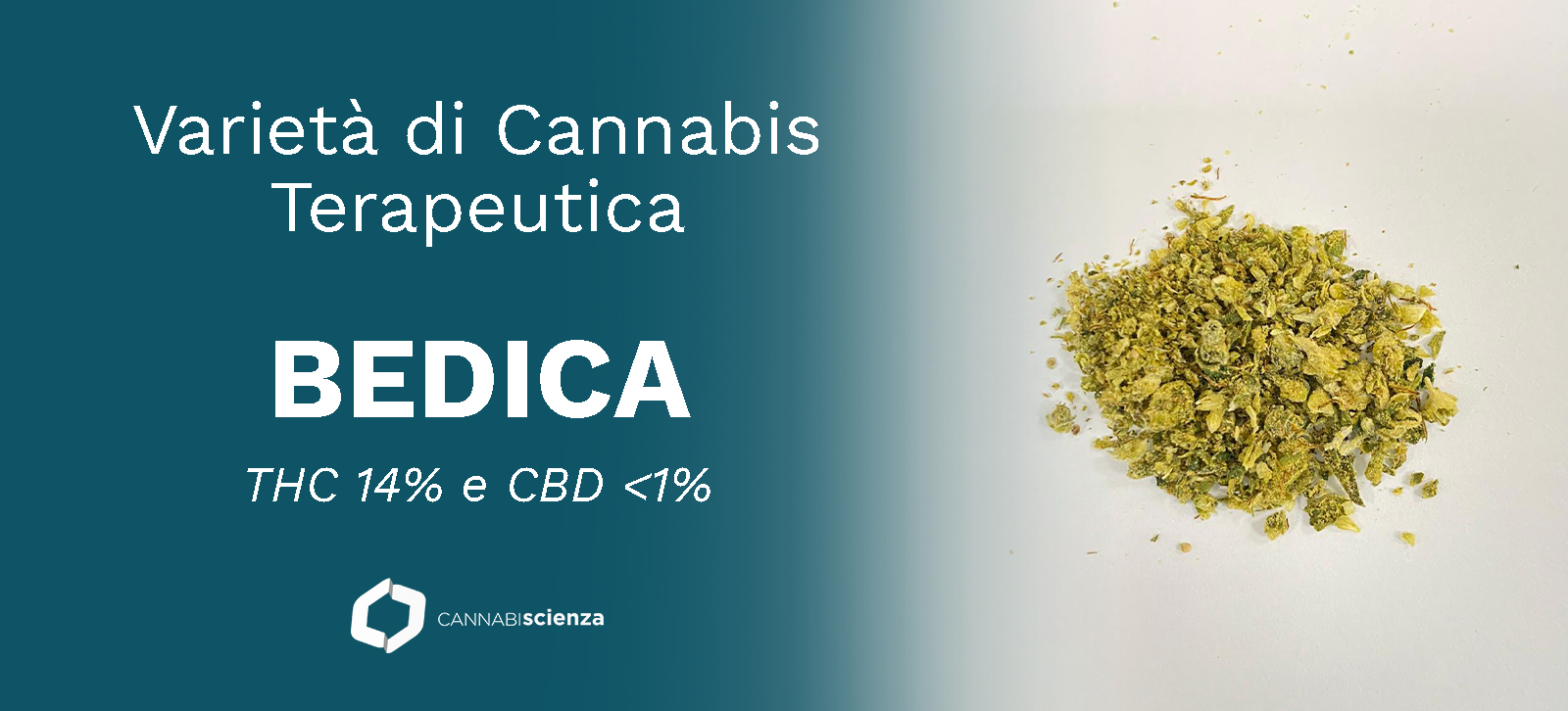 Bedica - Cannabis - terapeutica - Cannabiscienza