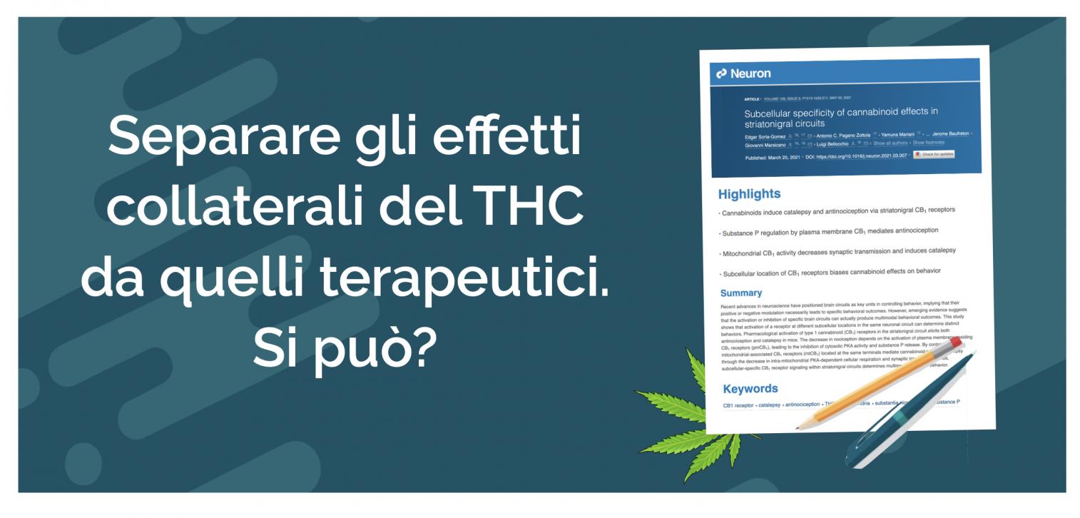 THC - Cannabiscienza - Sito