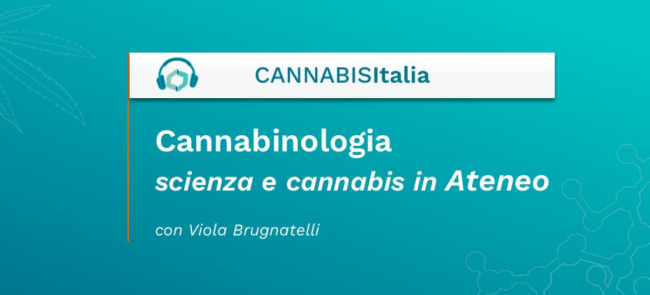 Cannabinologia scienza e cannabis in Ateneo - Cannabis Italia - Cannabiscienza - Sito
