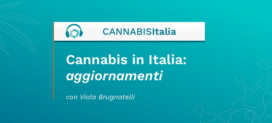 Cannabis in Italia aggiornamenti - Cannabis Italia - Cannabiscienza - Sito